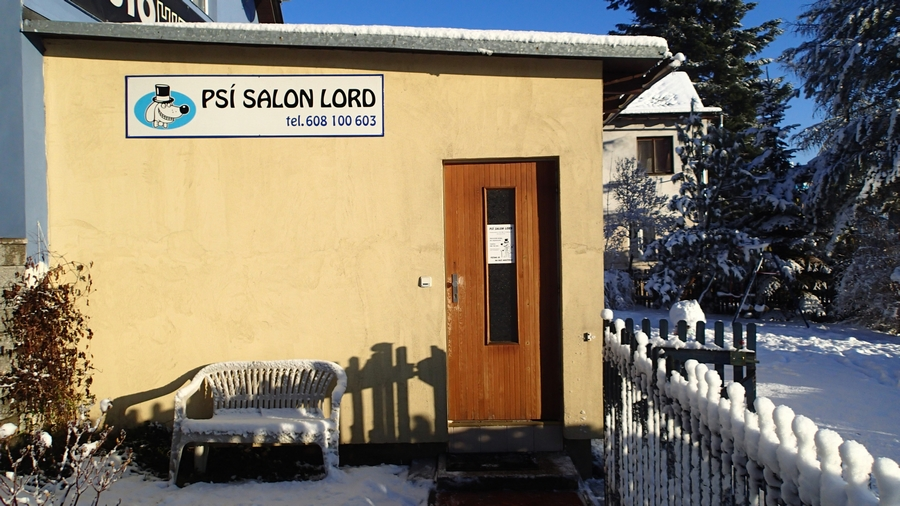 Psí salon Lord